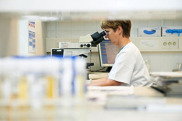 Laboruntersuchung im Labor am Diako